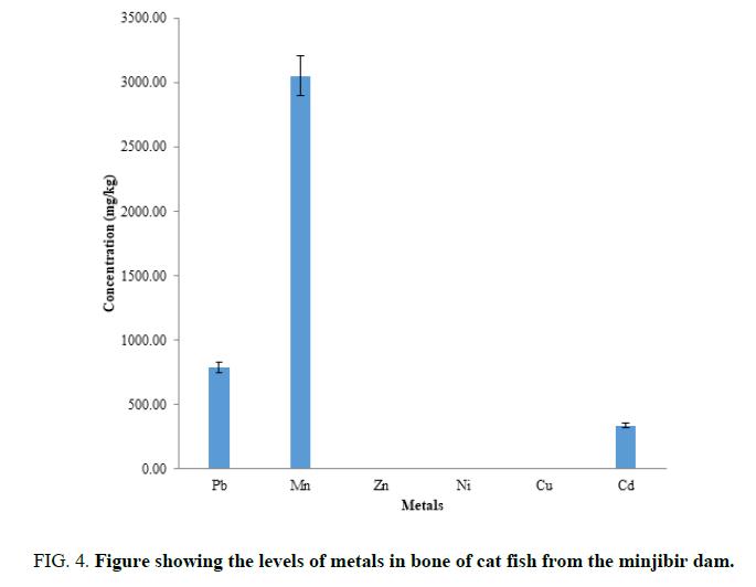 analytical-fish