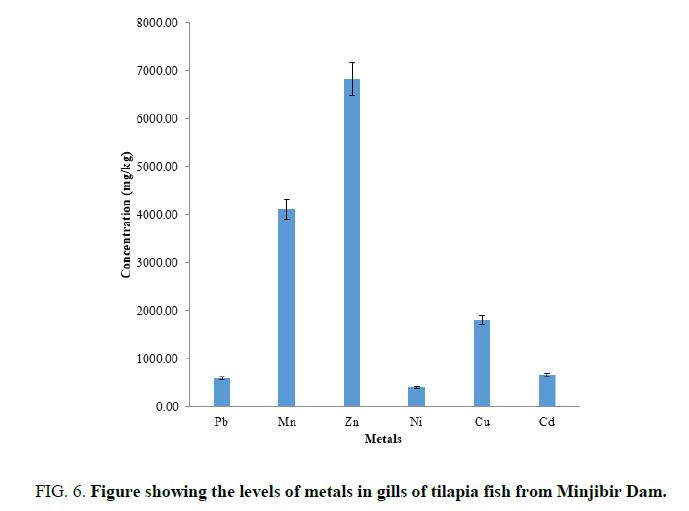 analytical-tilapia