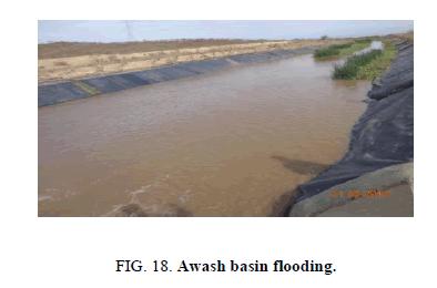 Chemical-Sciences-Awash-basin