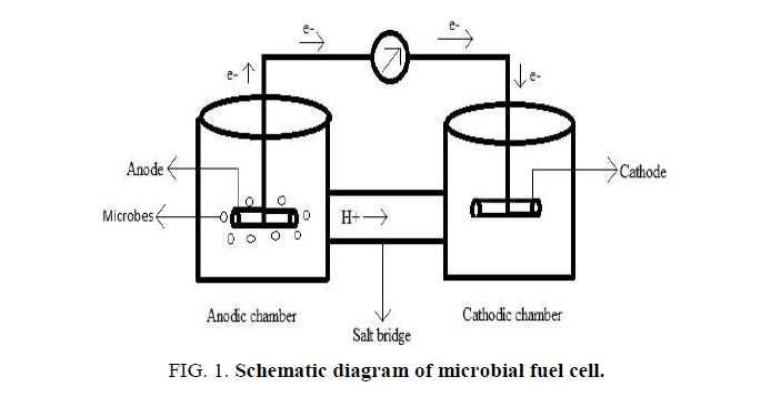 optimization of microbial fuel cell for treating