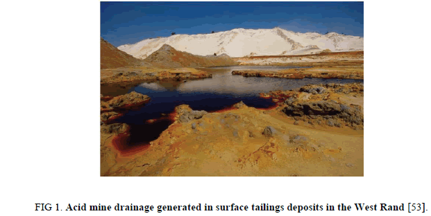 Chemical-Sciences-tailings-deposits
