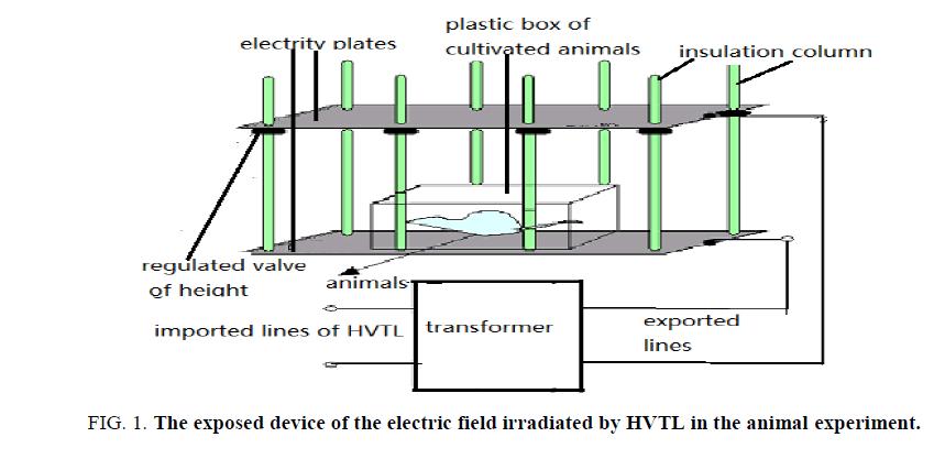 Environmental-Science-animal-experiment