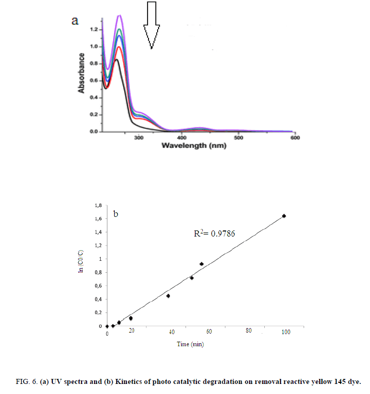 Environmental-Science-catalytic-degradation