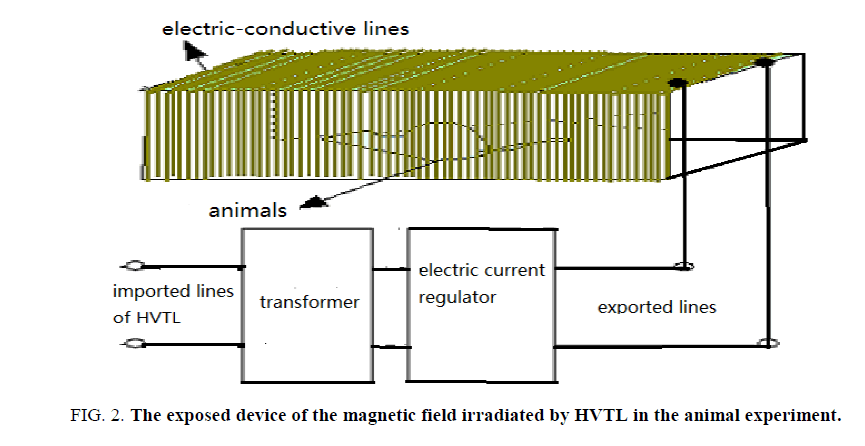 Environmental-Science-magnetic-field