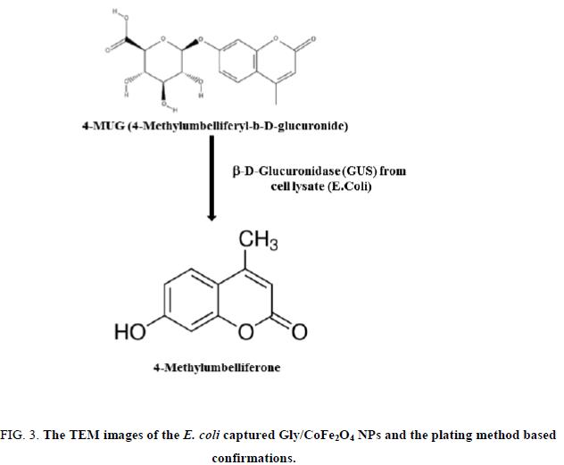 analytical-chemistry-plating-method-based