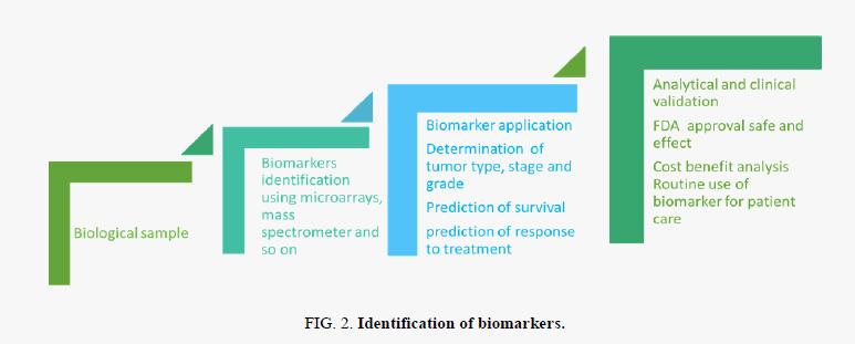 biochemistry-Identification