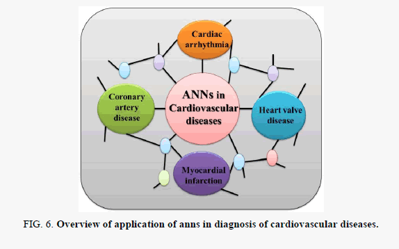 biochemistry-cardiovascular