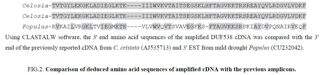 biochemistry-molecular-biology-letters-Comparison-deduced