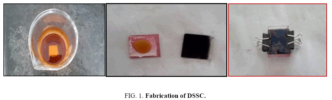 biotechnology-Fabrication-DSSC