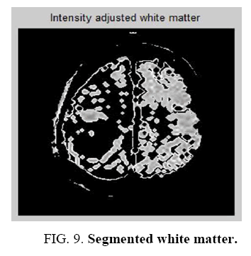biotechnology-Segmented-white