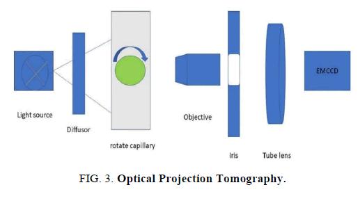 biotechnology-Tomography