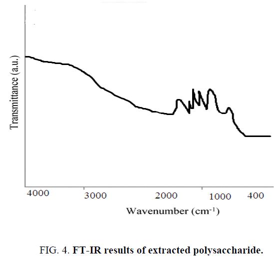 biotechnology-an-indian-journal-FT-IR-results
