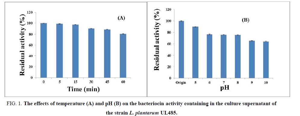 biotechnology-bacteriocin