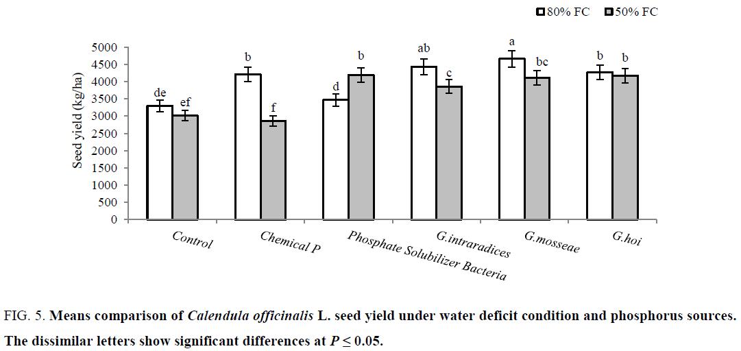 biotechnology-comparison-water-phosphorus