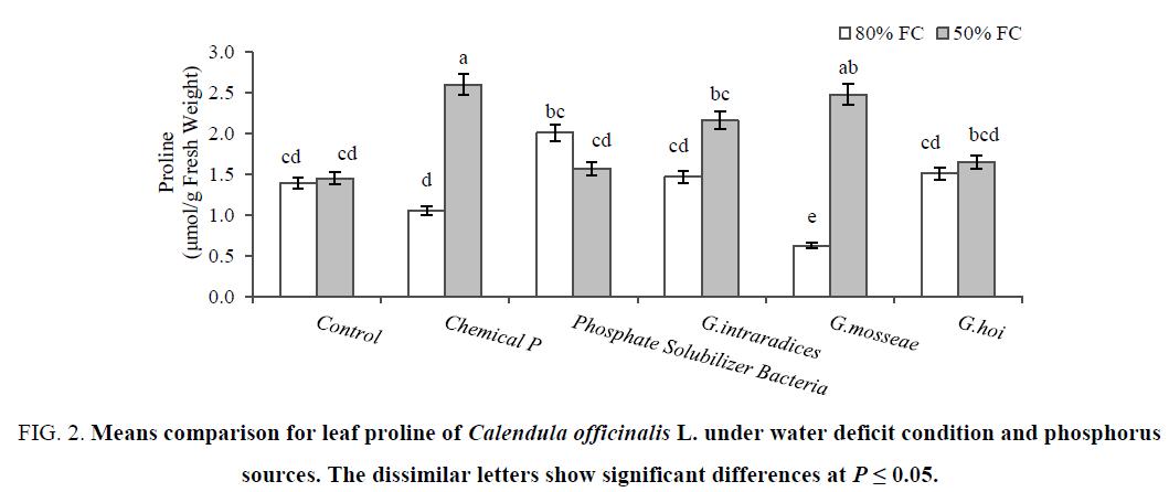 biotechnology-leaf-proline-phosphorus