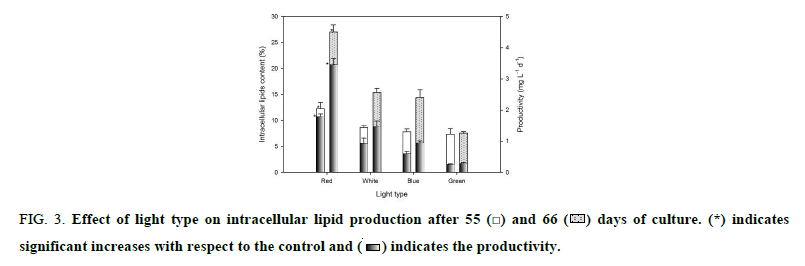 biotechnology-lipid-production
