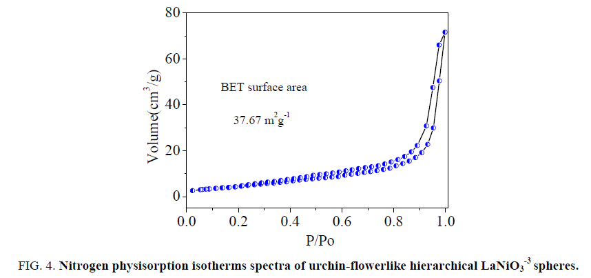 chemical-technology-Nitrogen-physisorption-isotherms
