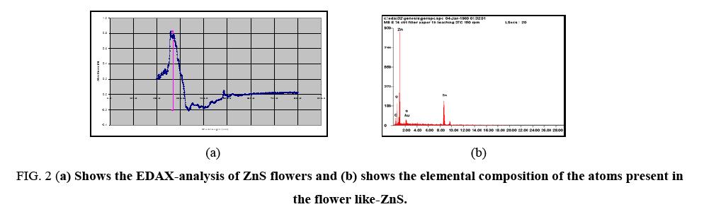chemxpress-EDAX-analysis