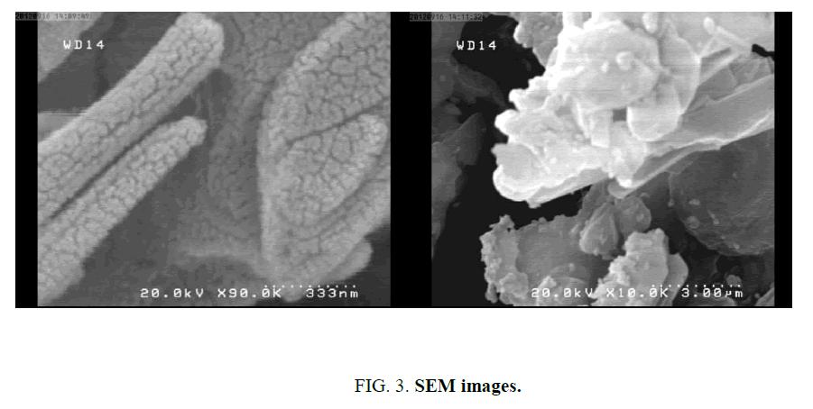 chemxpress-SEM-images