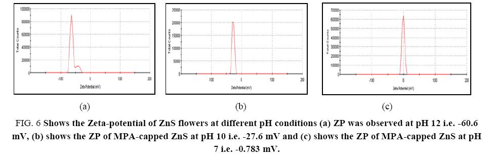 chemxpress-Zeta-potential