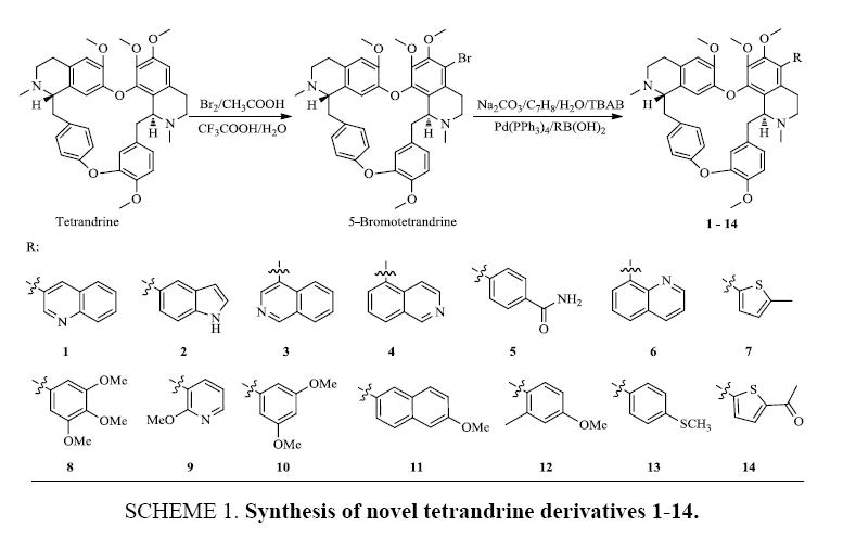 chemxpress-novel-tetrandrine