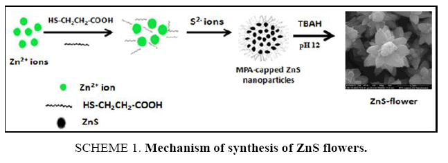 chemxpress-synthesis-ZnS