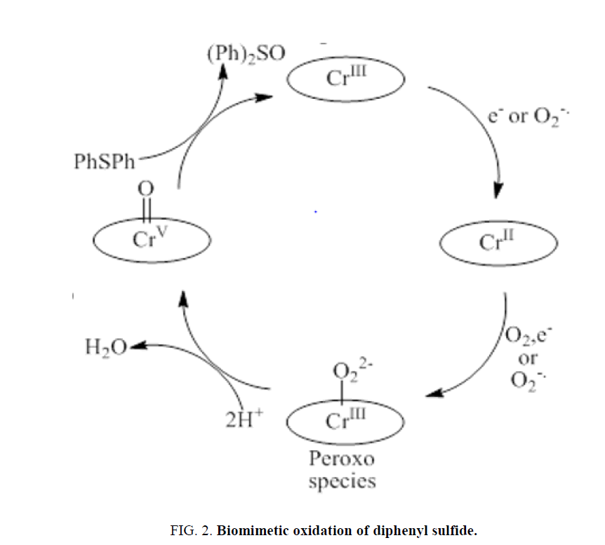 electrochemistry-Biomimetic-oxidation
