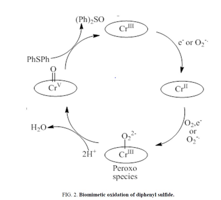 electrochemistry-Biomimetic-oxidation