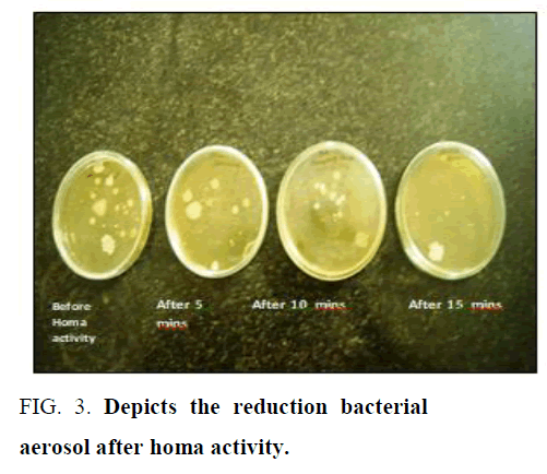 environmental-science-bacterial