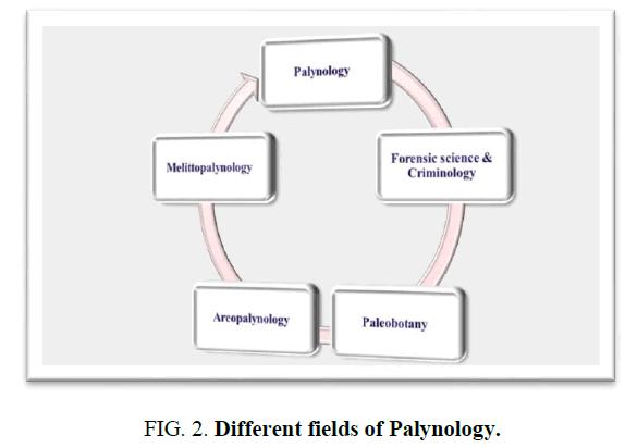 environmental-science-palynology