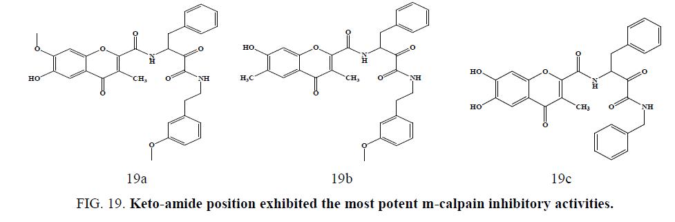 international-journal-chemical-sciences-Keto-amide