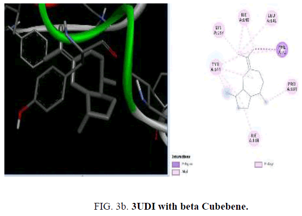 international-journal-chemical-sciences-beta-Cubebene