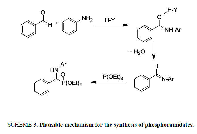 international-journal-chemical-sciences-synthesis-phosphoramidates