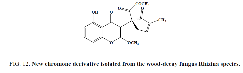 international-journal-chemical-sciences-wood-decay-fungus