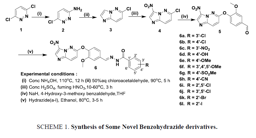 international-journal-of-chemical-sciences-benzohydrazide