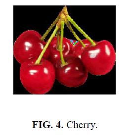 nano-science-nano-technology-Cherry