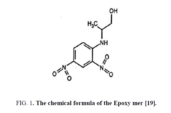 nano-science-nano-technology-Epoxy-mer