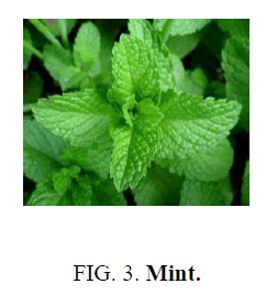 nano-science-nano-technology-Mint