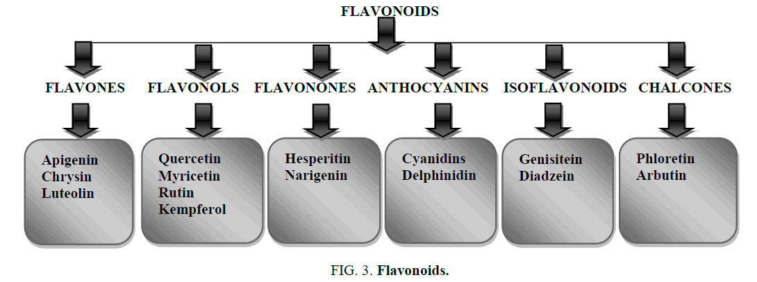 natural-products-Flavonoids