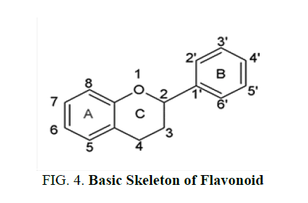 natural-products-Skeleton-Flavonoid