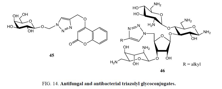 organic-chemistry-Antifungal-antibacterial-triazolyl-glycoconjugates