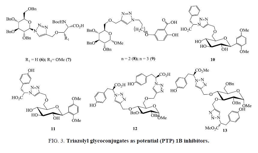 organic-chemistry-Triazolyl-glycoconjugates-potential