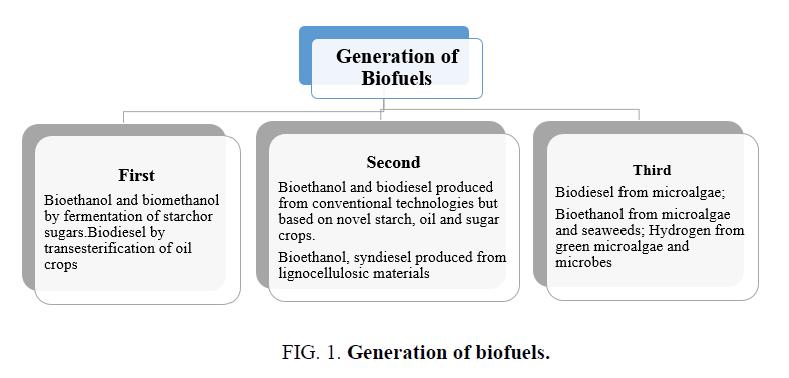 research-reviews-biosciences-Generation-biofuels