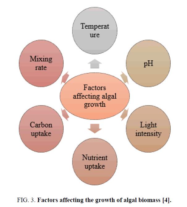 research-reviews-biosciences-algal-biomass