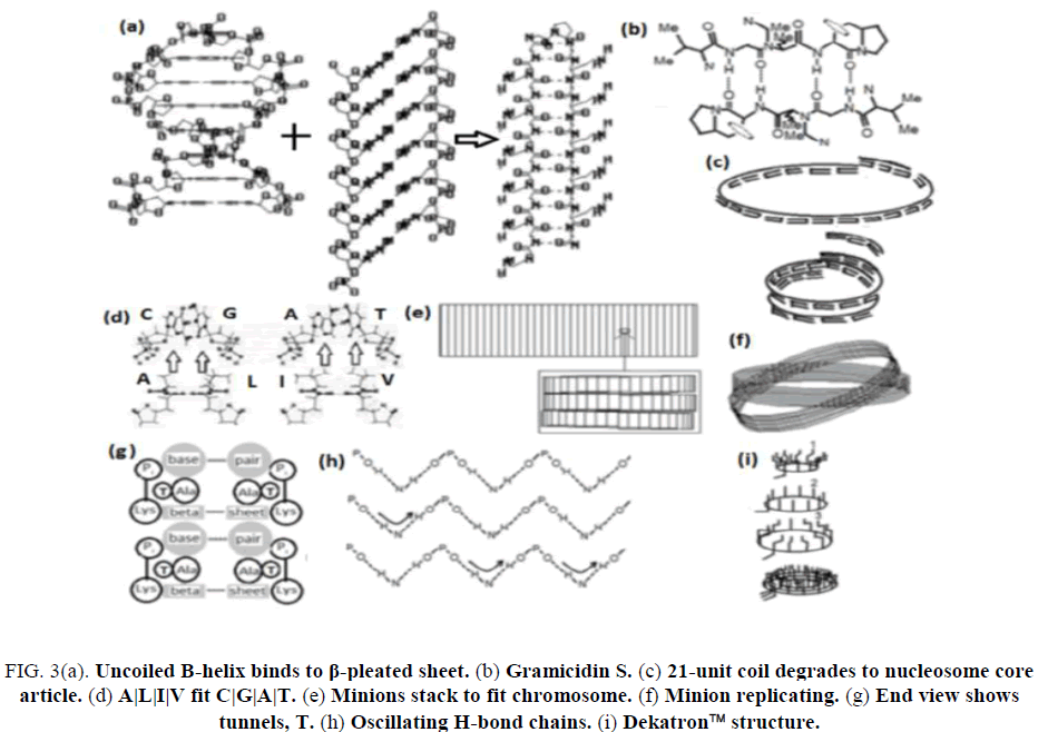 research-reviews-electrochemistry-Uncoiled-B-helix-binds