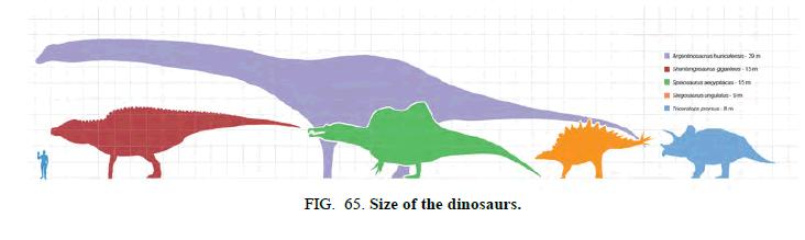 space-exploration-Size-dinosaurs