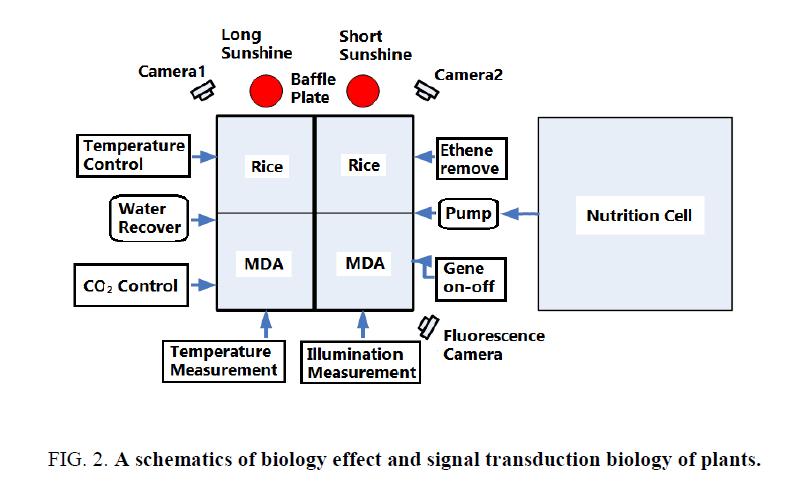 space-exploration-signal-transduction-biology